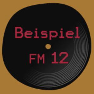 Radio BeispielFM 12