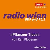 Podcast Radio Wien Pflanzentipps
